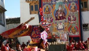 tiji-festival-mustang